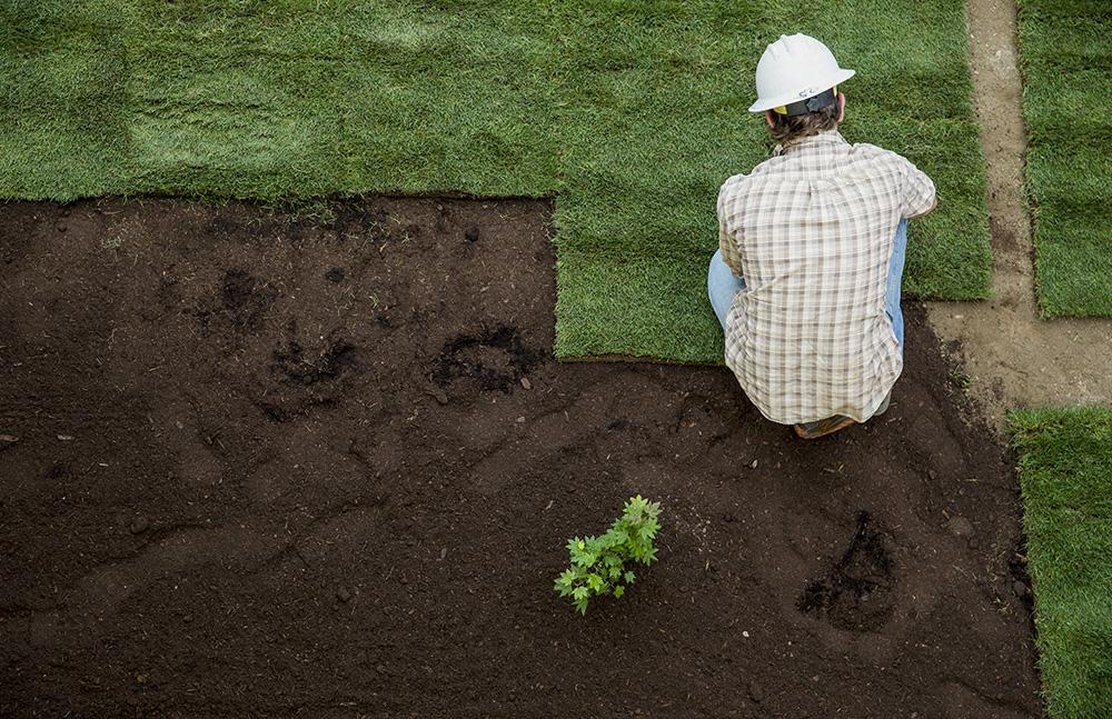 Volunteer worker laying sod